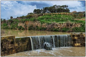 after the rain ramla valley peter mohr