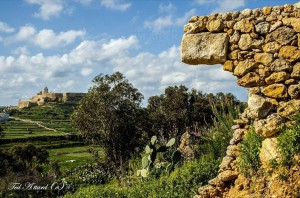 spring is in the air gozo ted attard